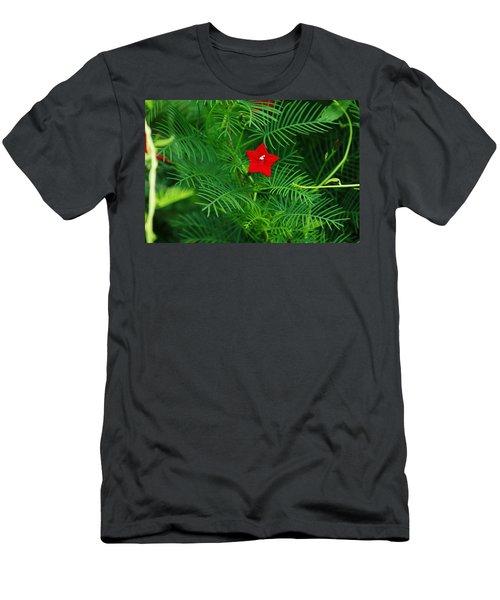 Ipomoea Quamoclit Men's T-Shirt (Athletic Fit)