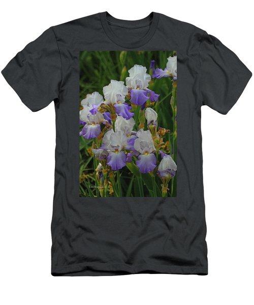 Iris Patch At The Arboretum Men's T-Shirt (Athletic Fit)