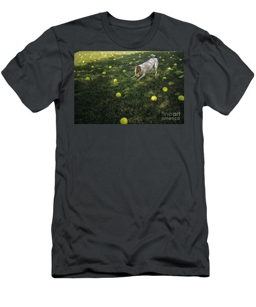 Jack Russell Terrier Tennis Balls Men's T-Shirt (Athletic Fit)