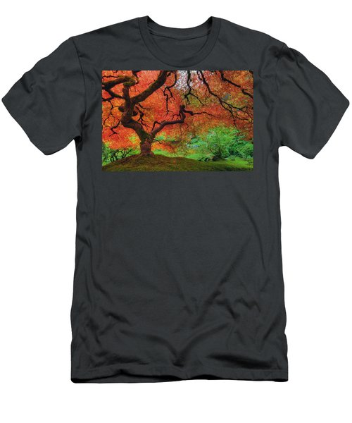 Japanese Maple Tree In Autumn Men's T-Shirt (Athletic Fit)
