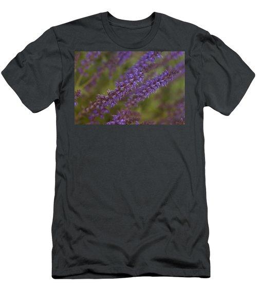 Jardin De Rue Men's T-Shirt (Athletic Fit)