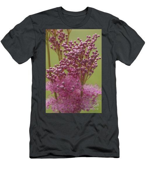 July Astilbe Men's T-Shirt (Athletic Fit)