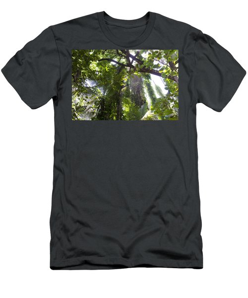 Jungle Canopy Men's T-Shirt (Athletic Fit)