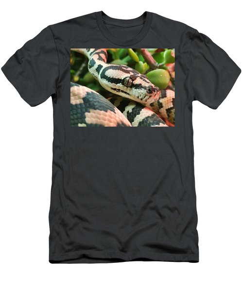 Jungle Python Men's T-Shirt (Athletic Fit)