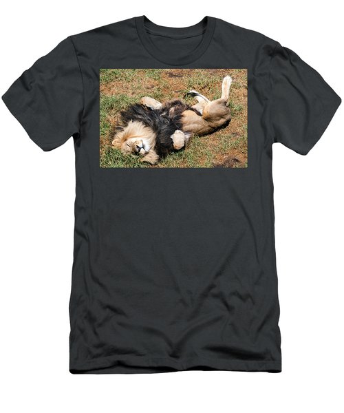Just Lion Down Men's T-Shirt (Athletic Fit)