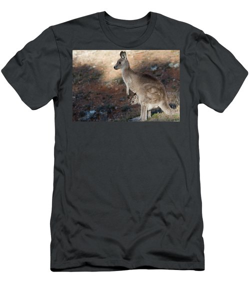 Kangaroo And Joey Men's T-Shirt (Athletic Fit)