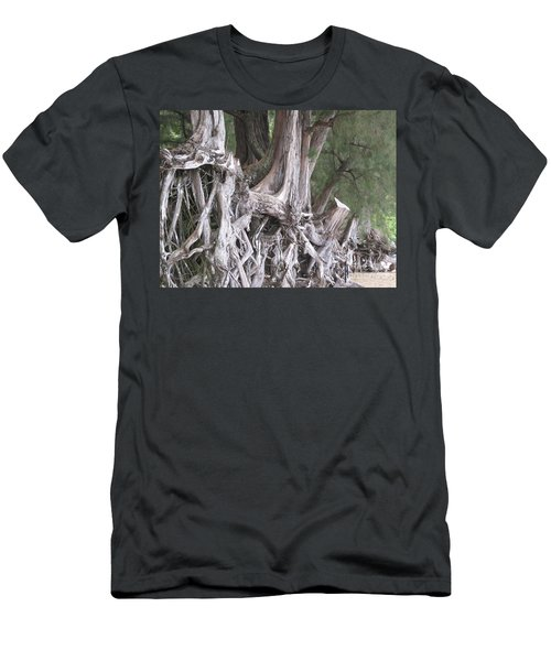 Kauai - Roots Men's T-Shirt (Slim Fit) by HEVi FineArt