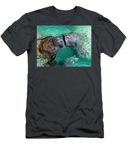 Kissing Manatees Near Harbour Island Men's T-Shirt (Athletic Fit)