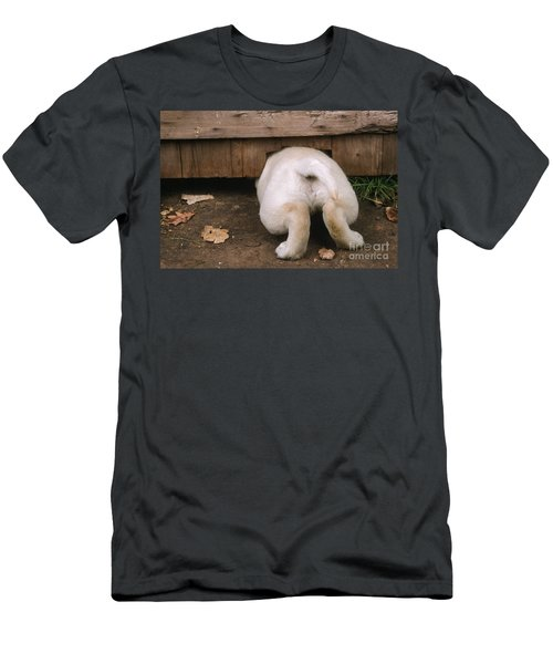 Labrador Puppy Men's T-Shirt (Athletic Fit)
