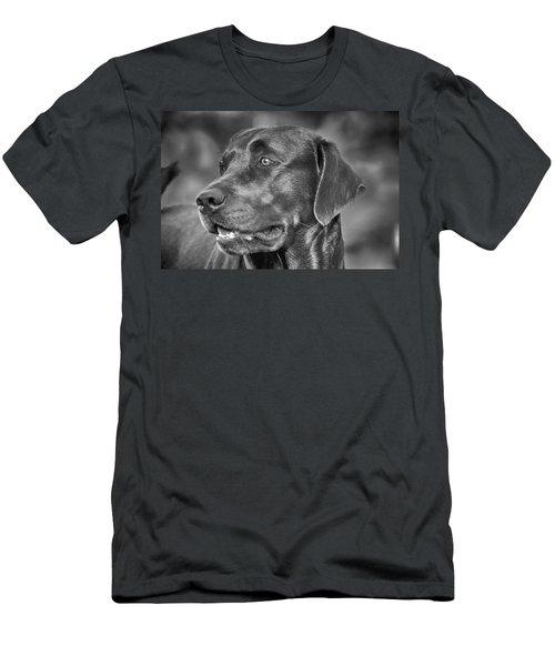 Labrador Sweetie Men's T-Shirt (Athletic Fit)
