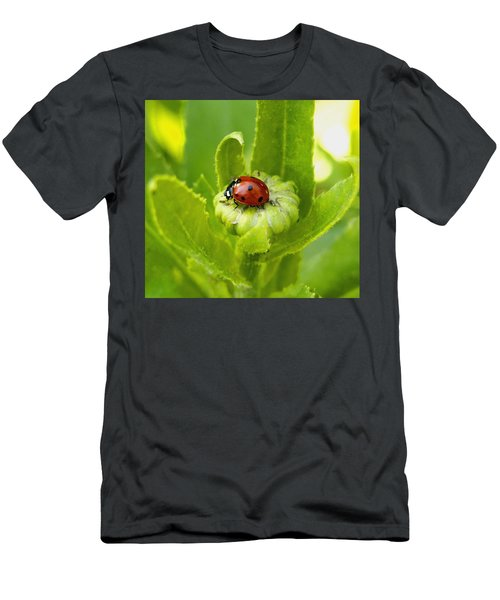 Lady Bug In The Garden Men's T-Shirt (Athletic Fit)