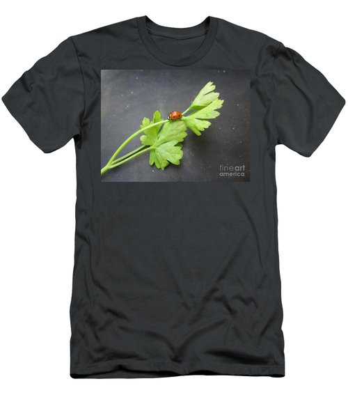Ladybug On A Parsley Stalk 2 Men's T-Shirt (Athletic Fit)