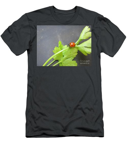Ladybug On A Parsley Stalk 4 Men's T-Shirt (Athletic Fit)