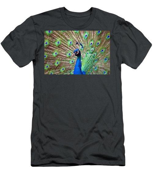 Landscape Peacock Men's T-Shirt (Athletic Fit)