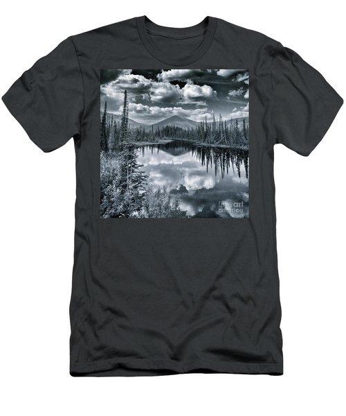 Landshapes 29 Men's T-Shirt (Athletic Fit)