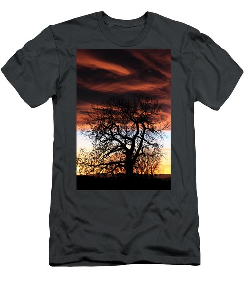 Large Cottonwood At Sunset Men's T-Shirt (Athletic Fit)