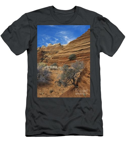 Layered Sandstone Men's T-Shirt (Athletic Fit)
