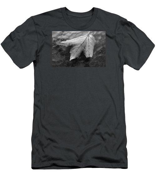 Leaf On Glass Men's T-Shirt (Slim Fit) by John Schneider