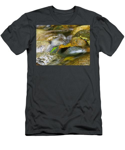 Leaves On The Rocks Men's T-Shirt (Athletic Fit)