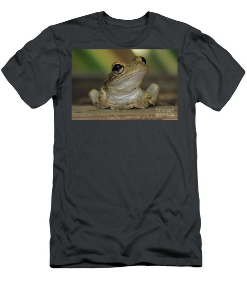 Let's Talk - Cuban Treefrog Men's T-Shirt (Athletic Fit)