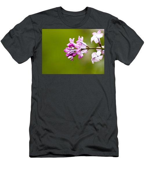 Lilac Flowers - Arboretum - Madison Men's T-Shirt (Athletic Fit)