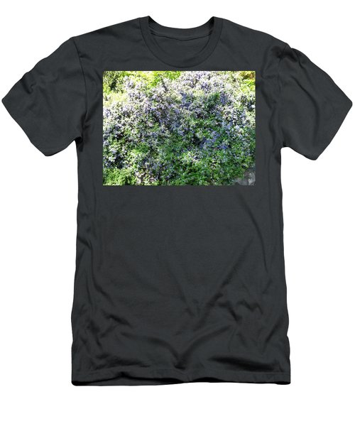 Lincoln Park In Bloom Men's T-Shirt (Slim Fit) by David Trotter