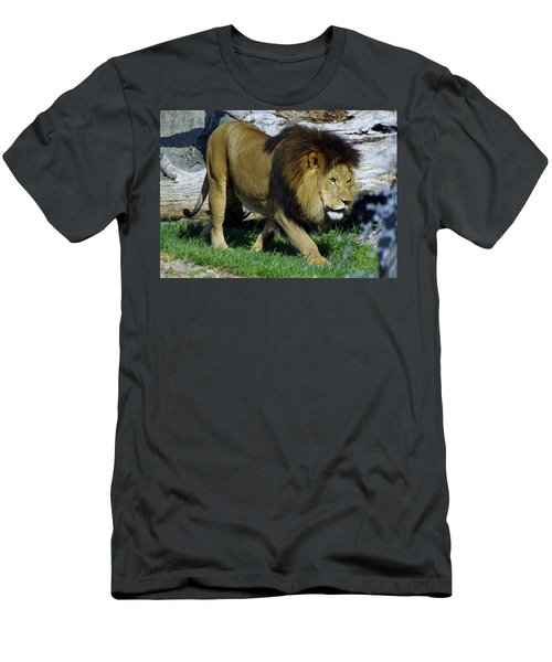 Lion 1 Men's T-Shirt (Athletic Fit)