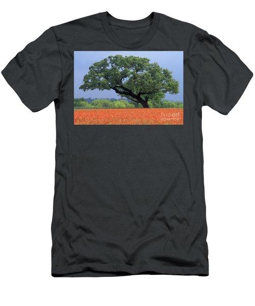 Live Oak And Paintbrush - Fs000920 Men's T-Shirt (Athletic Fit)