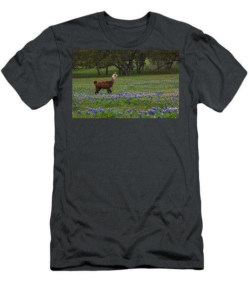 Llama In Bluebonnets Men's T-Shirt (Athletic Fit)