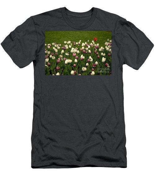 Lone Soldier Men's T-Shirt (Athletic Fit)