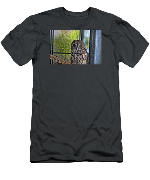 Lonely Owl Men's T-Shirt (Athletic Fit)