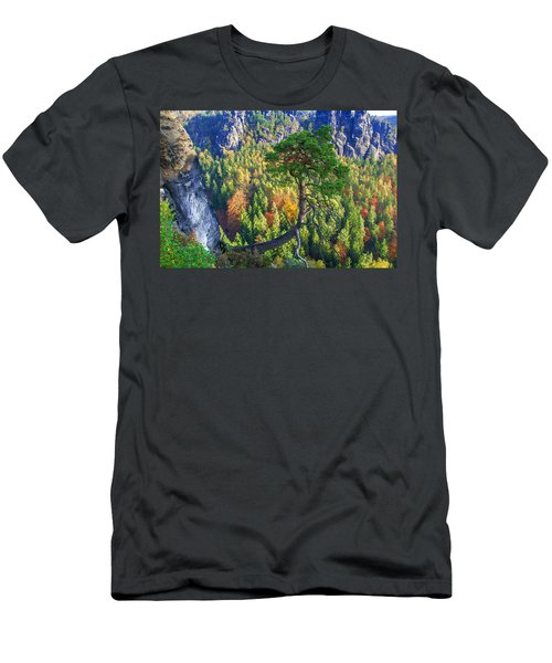 Lonely Tree In The Elbe Sandstone Mountains Men's T-Shirt (Athletic Fit)