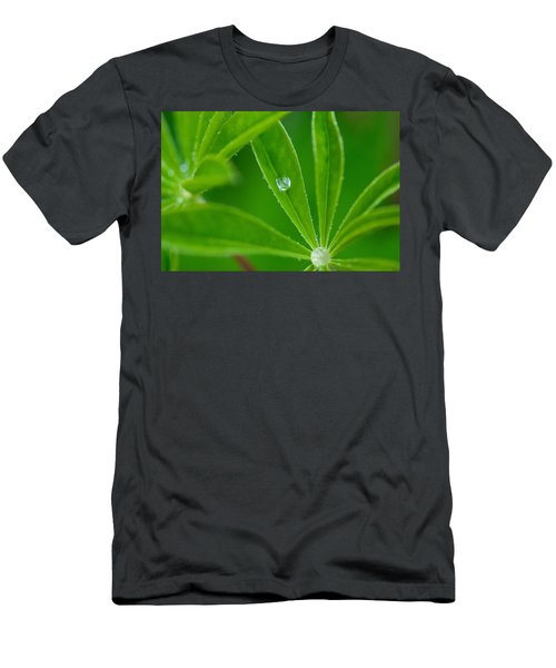 Lupine Dreams Men's T-Shirt (Athletic Fit)