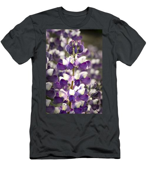Men's T-Shirt (Slim Fit) featuring the photograph Lupine Wildflowers by Sonya Lang