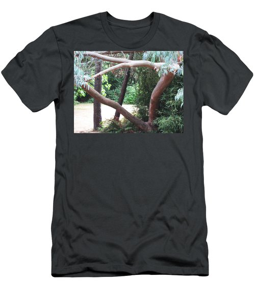 Madrona Men's T-Shirt (Slim Fit) by David Trotter