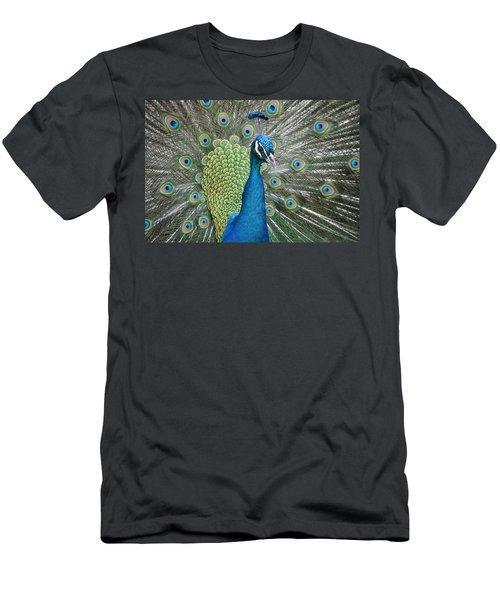 Magnifique Men's T-Shirt (Athletic Fit)