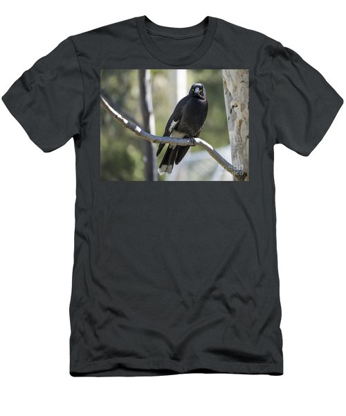 Magpie Men's T-Shirt (Athletic Fit)
