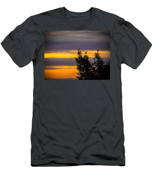 Magpies At Sunrise Men's T-Shirt (Athletic Fit)