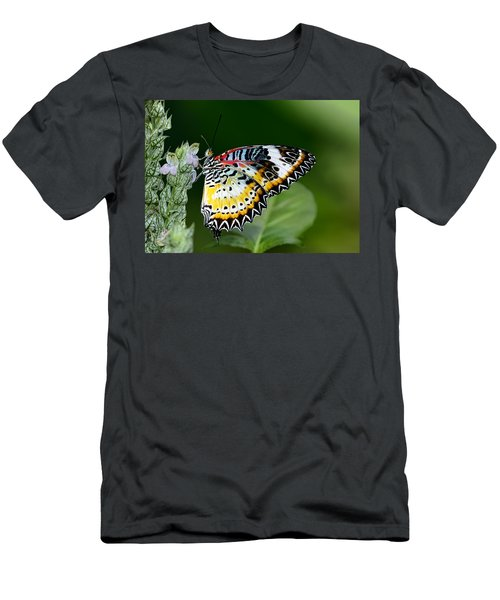 Malay Lacewing Butterfly Men's T-Shirt (Athletic Fit)