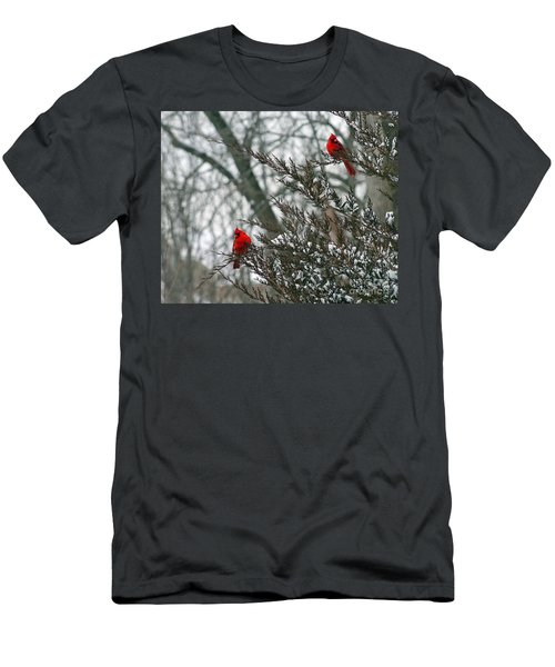 Male Cardinal Pair Men's T-Shirt (Athletic Fit)