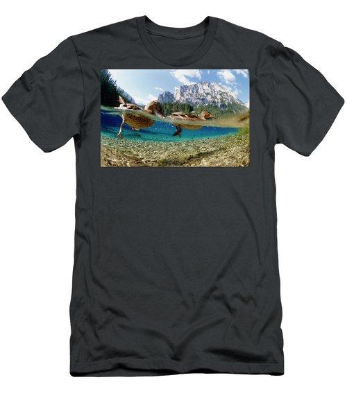 Mallard Anas Platyrhynchos Men's T-Shirt (Athletic Fit)