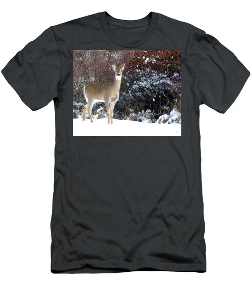 March Snow And A Doe Men's T-Shirt (Athletic Fit)