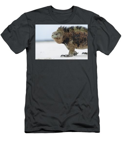 Men's T-Shirt (Athletic Fit) featuring the photograph Marine Iguana Male Turtle Bay Santa by Tui De Roy