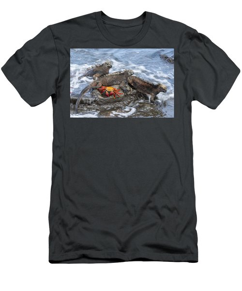 Marine Iguana Trio And Sally Lightfoot Men's T-Shirt (Athletic Fit)