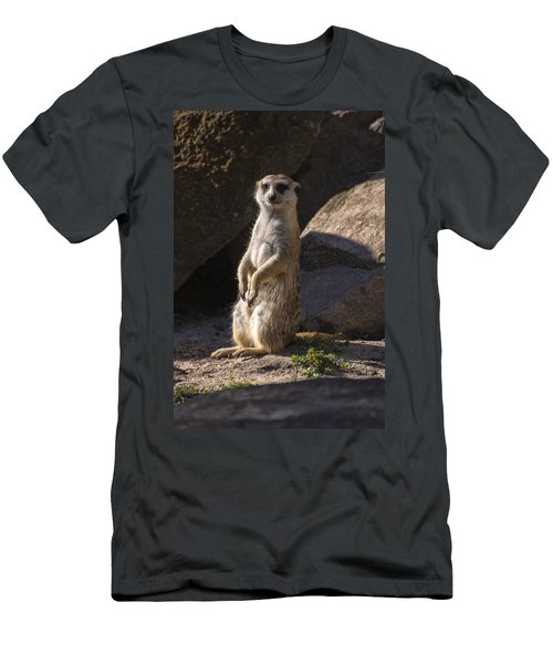Meerkat Looking Forward Men's T-Shirt (Slim Fit) by Chris Flees
