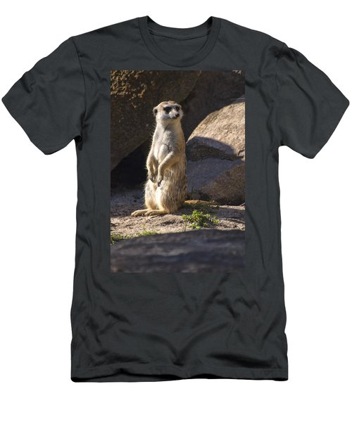 Meerkat Looking Left Men's T-Shirt (Slim Fit) by Chris Flees
