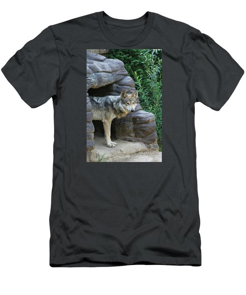 Mexican Wolf #2 Men's T-Shirt (Athletic Fit)