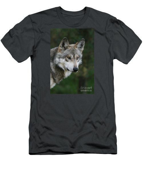Mexican Wolf #4 Men's T-Shirt (Athletic Fit)