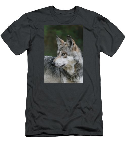 Mexican Wolf #6 Men's T-Shirt (Slim Fit) by Judy Whitton