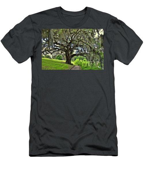 Middleton Place Oak  Men's T-Shirt (Athletic Fit)